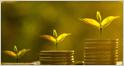 Développement de l'économie et protection de l'environnement